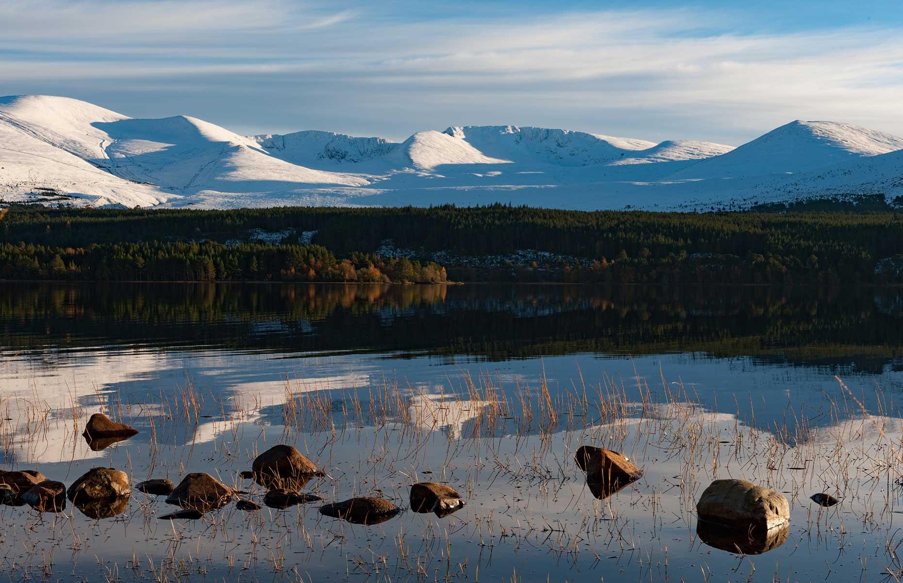 Loch Morlich in Glenmore Forest (Image: Blythe Storm/Shutterstock)