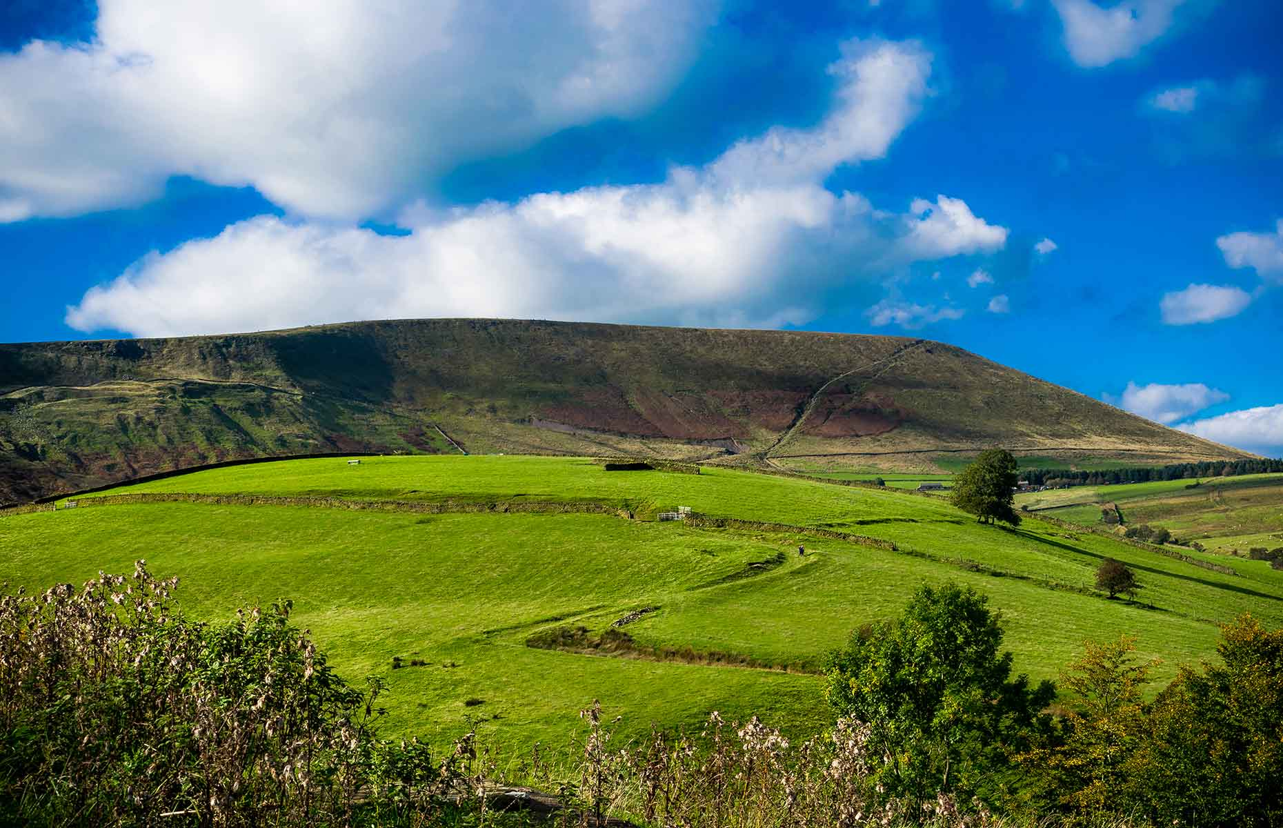 Forest of Bowland (Image: Lukasz Puch/Shutterstock)