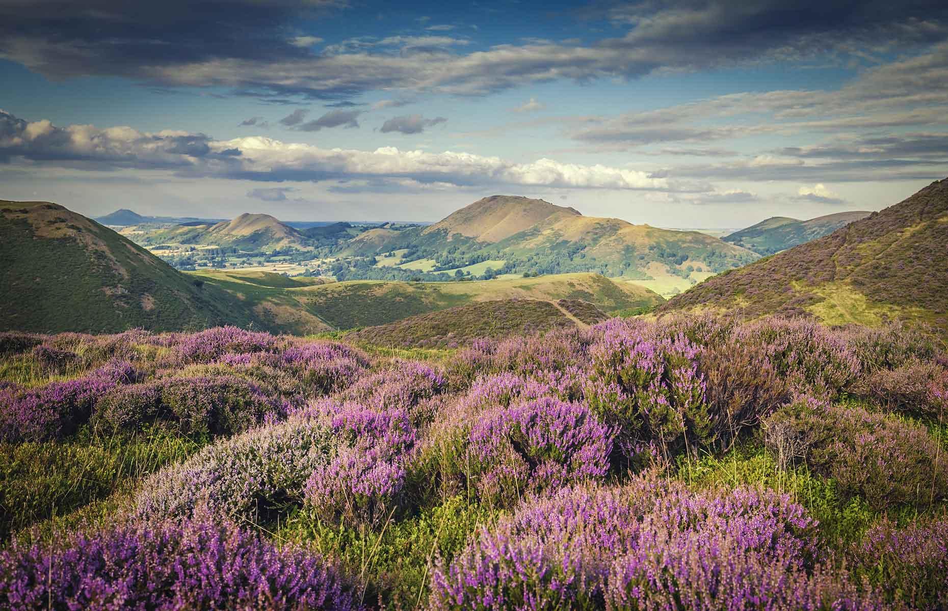 Shropshire Hills (Image: EddieCloud/Shutterstock)