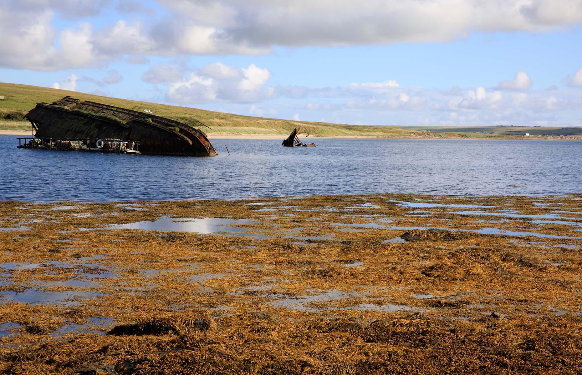 Scapa Flow in Scotland (Image: Paolo Trovo/Shutterstock)