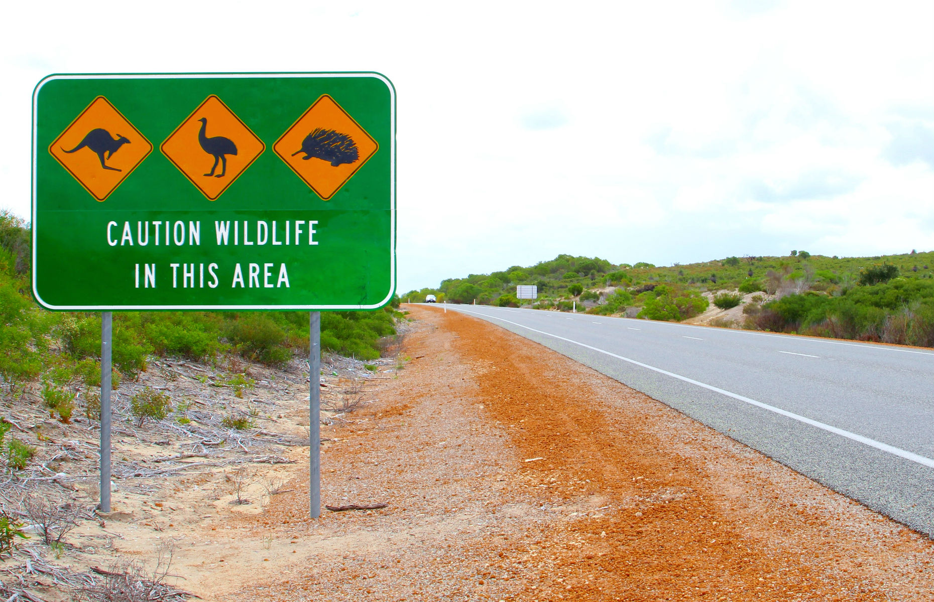 Australia_wildlife_signs