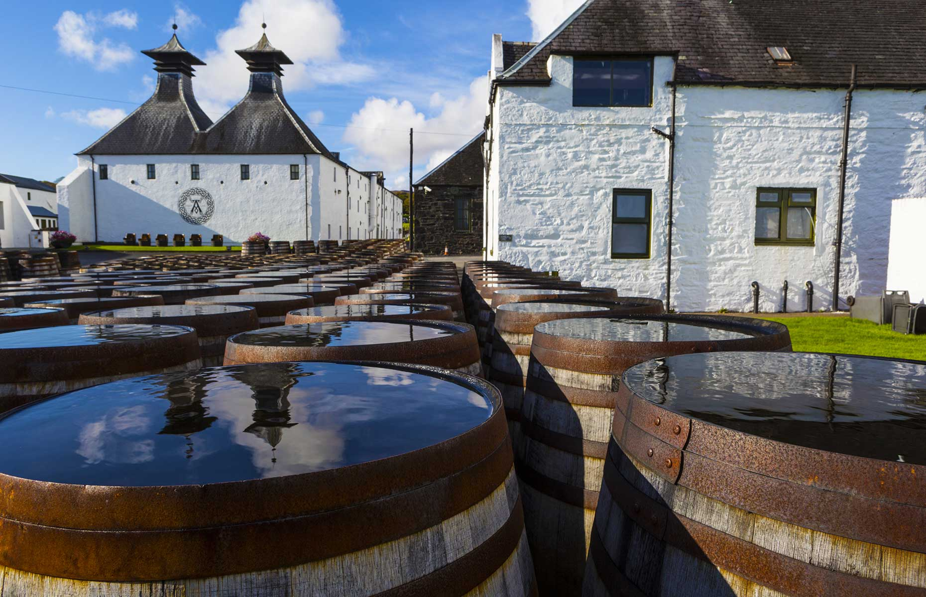 Islay, is home to eight, distilleries, but you should also come here for the wildlife