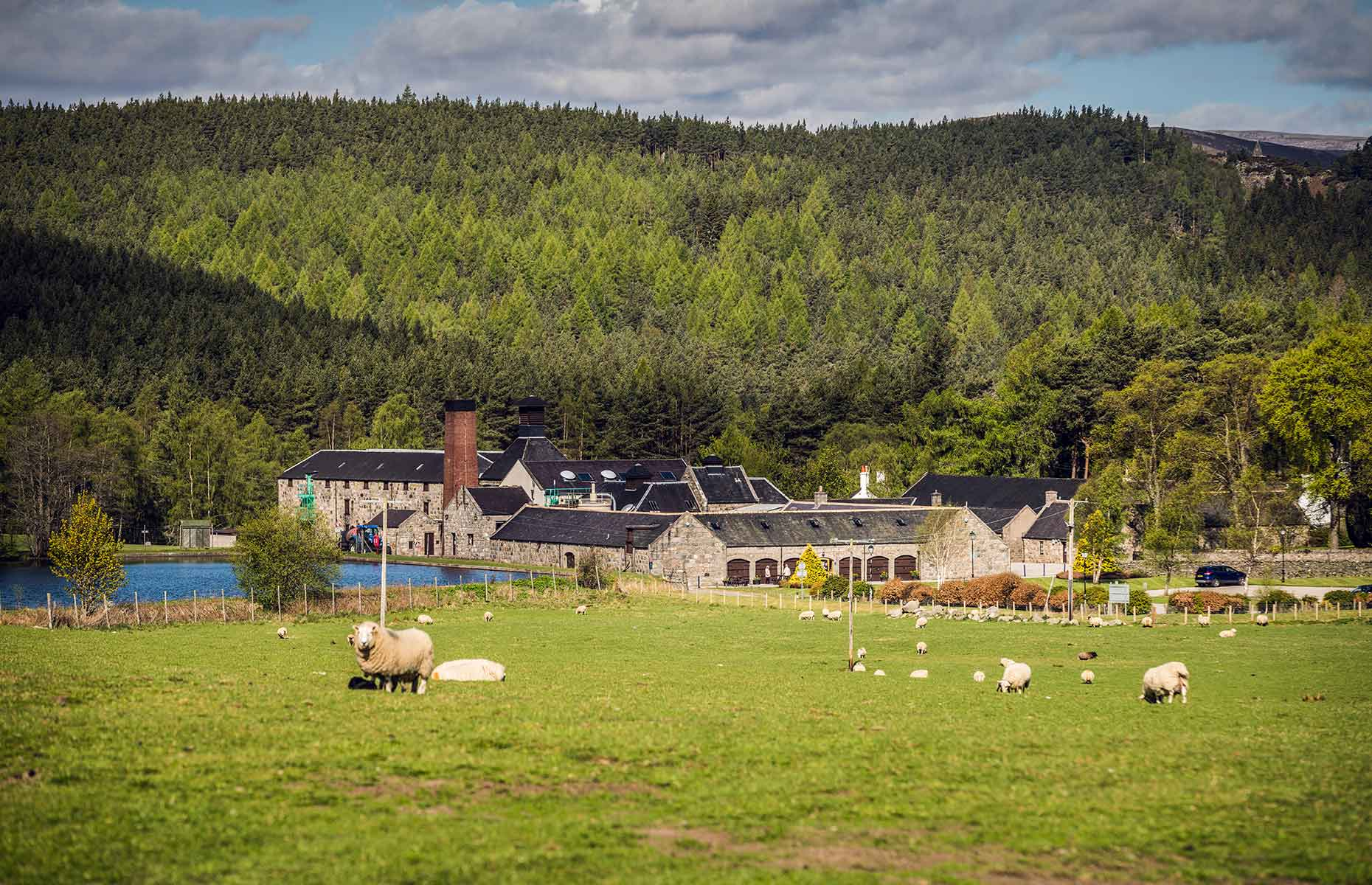 The Distillery at Royal Lochnagar Whisky