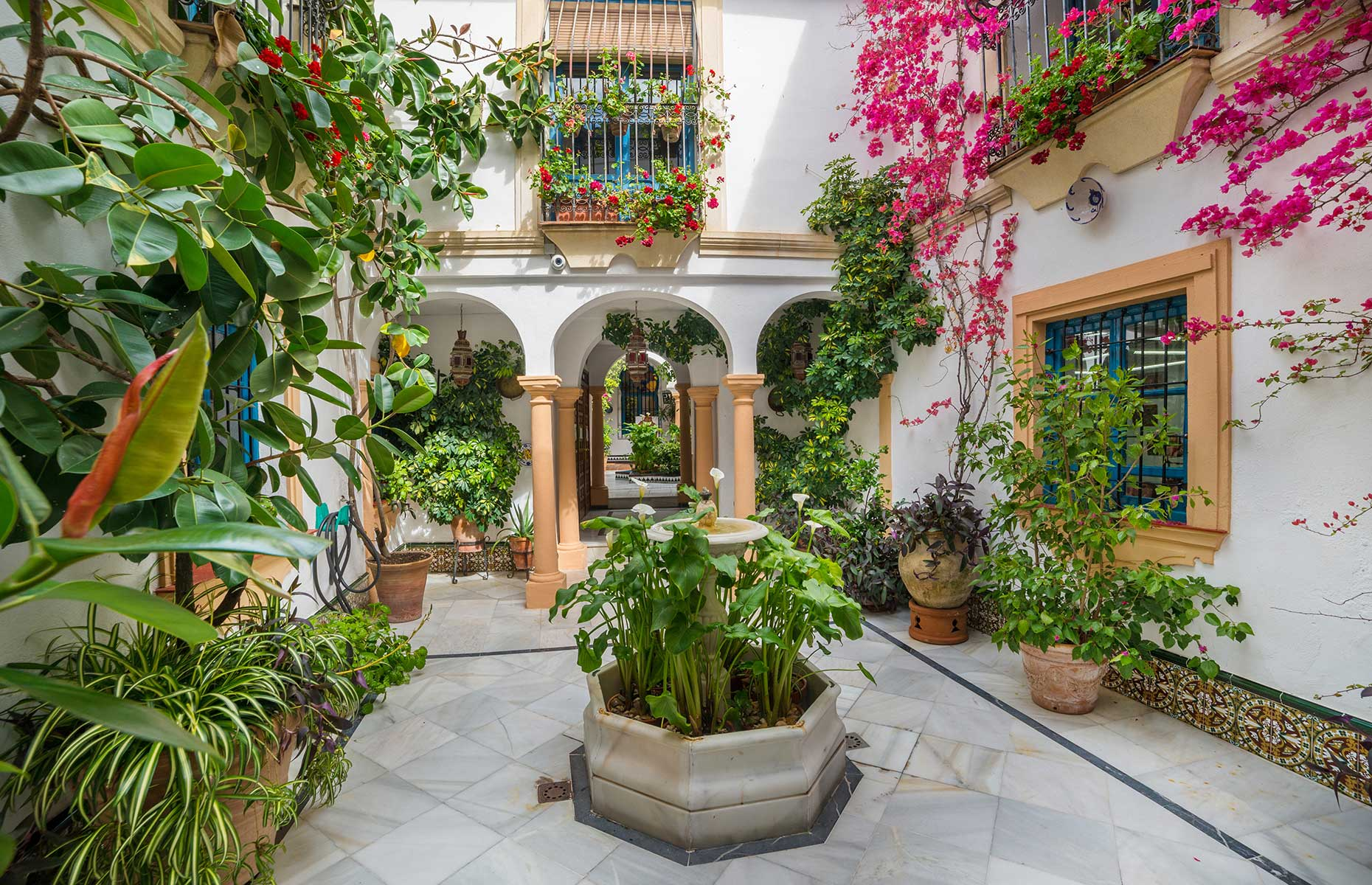 Traditional Córdoban patio (Image: Cristian Balate/Shutterstock)