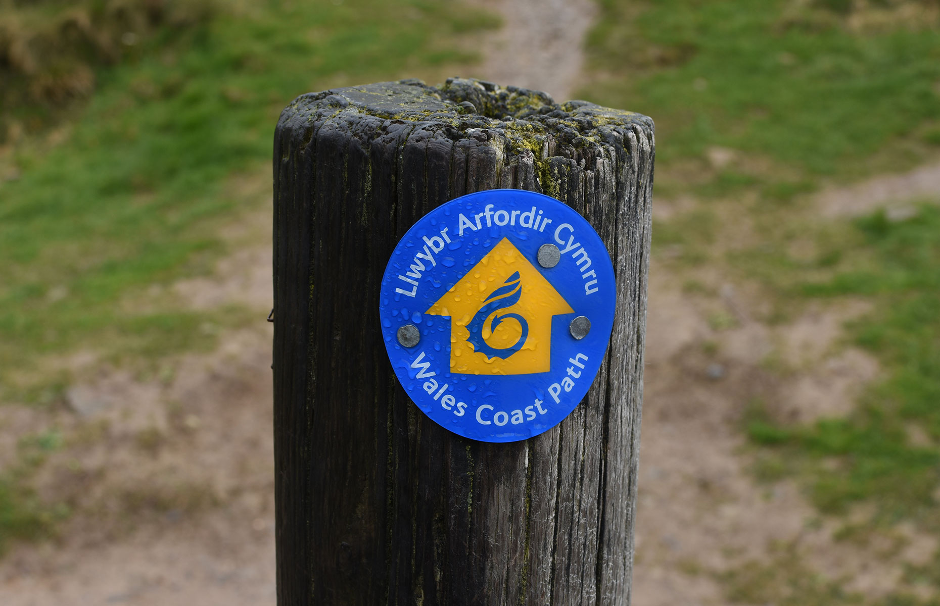 Waymarker on the Wales Coast Path