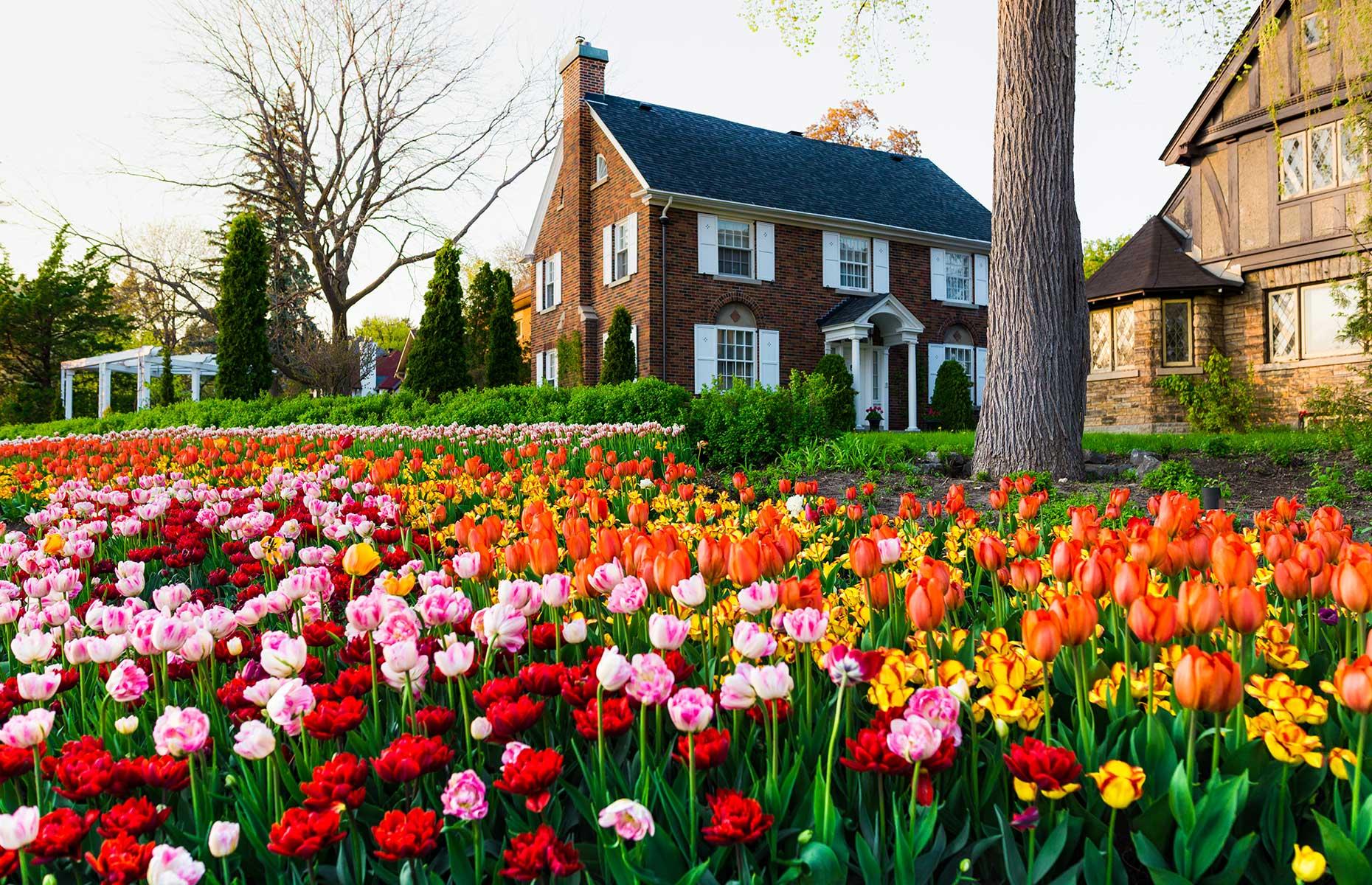 Tulip festival, Ottawa, Ontario, Canada (Image: Facto Photo/Shutterstock)