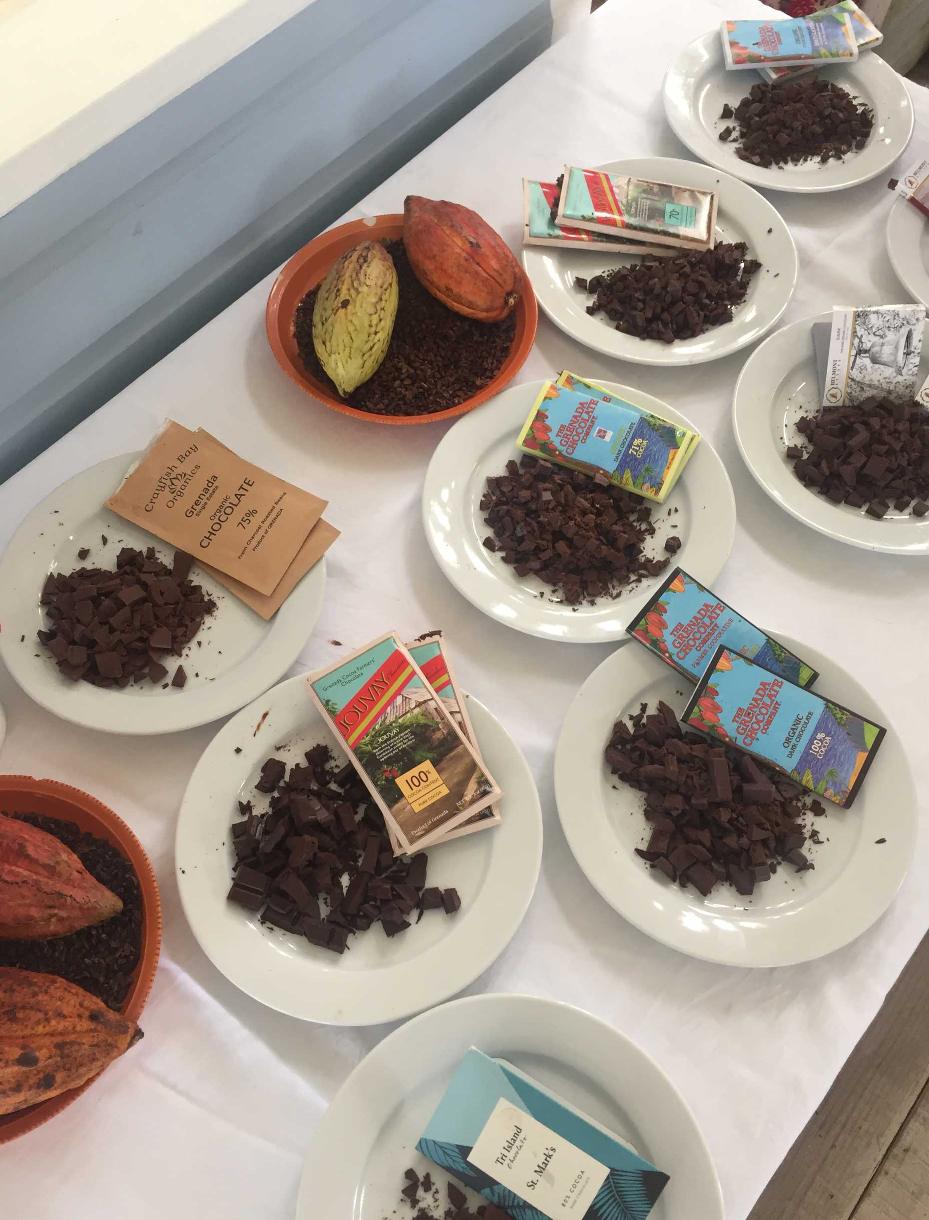 Chocolate tasting at the annual Grenada Chocolate Festival