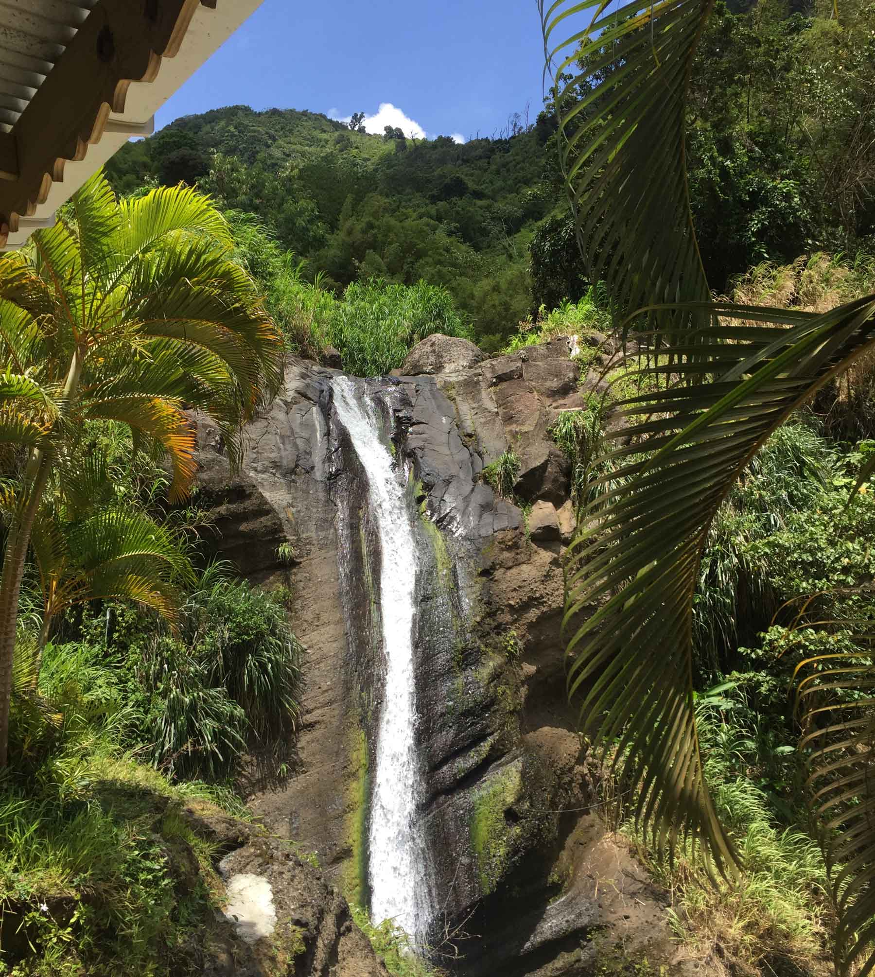 Sugar and spice: why you've got to go to Grenada | loveexploring com