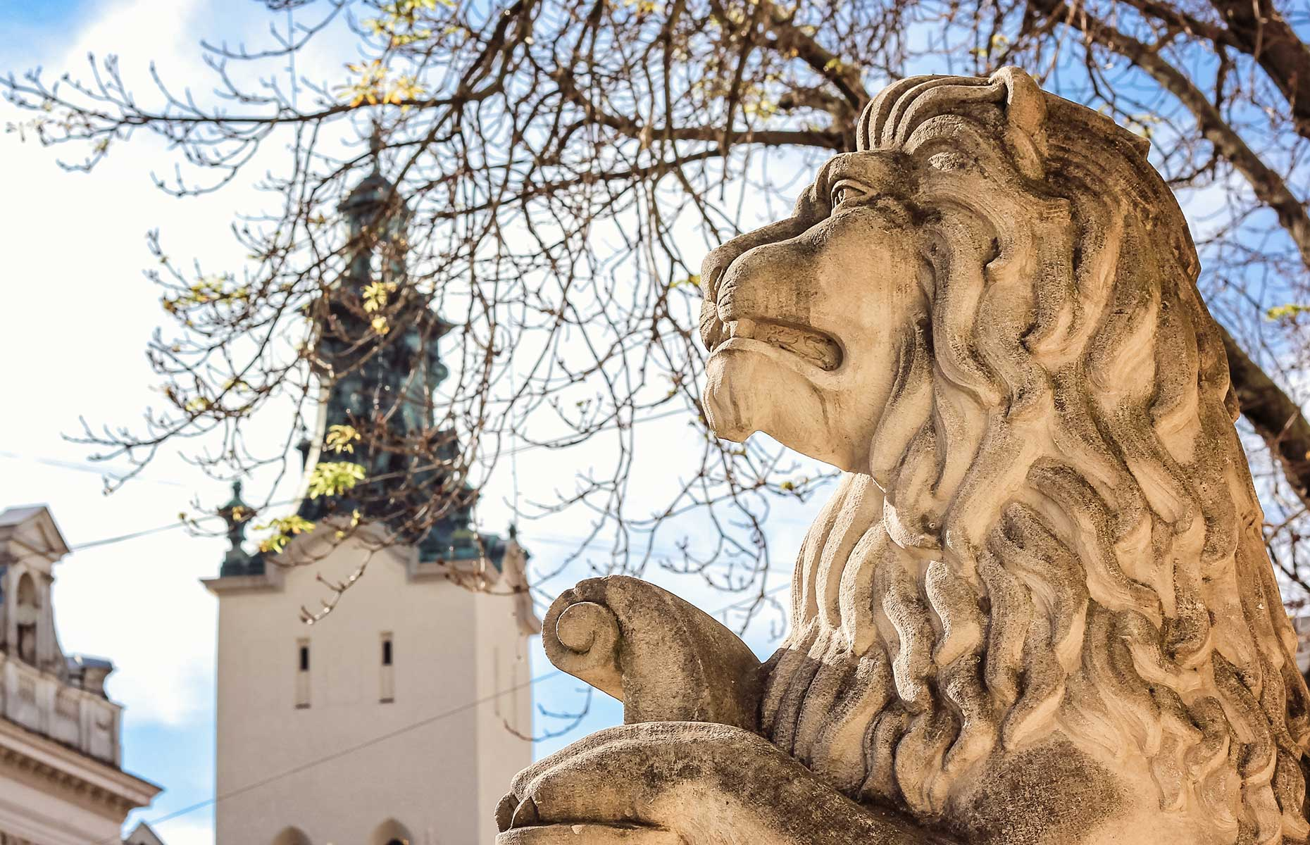 One of the many lion statues outside the city hall