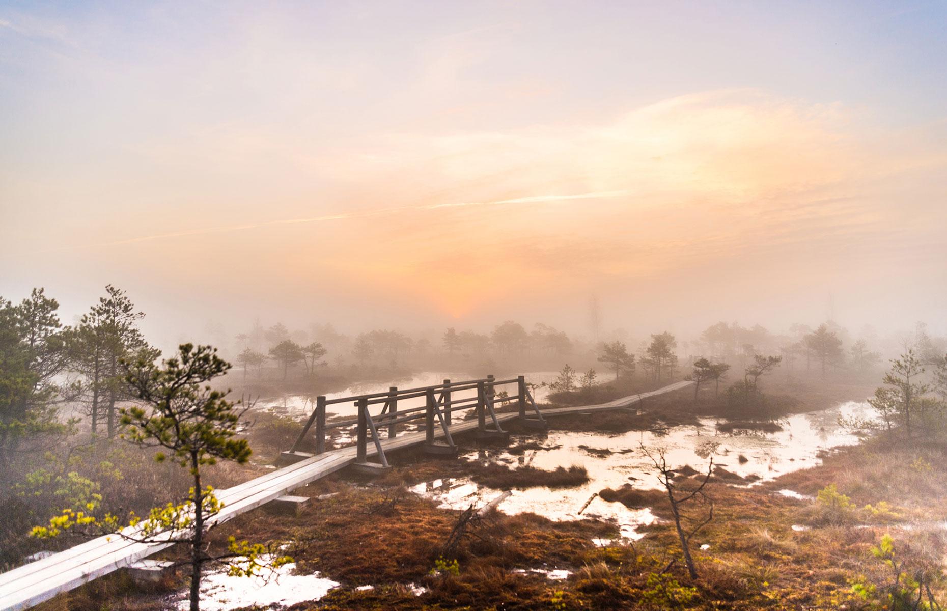 Sunrise at Kemeri, Latvia (Image: mdbildes/Shutterstock)