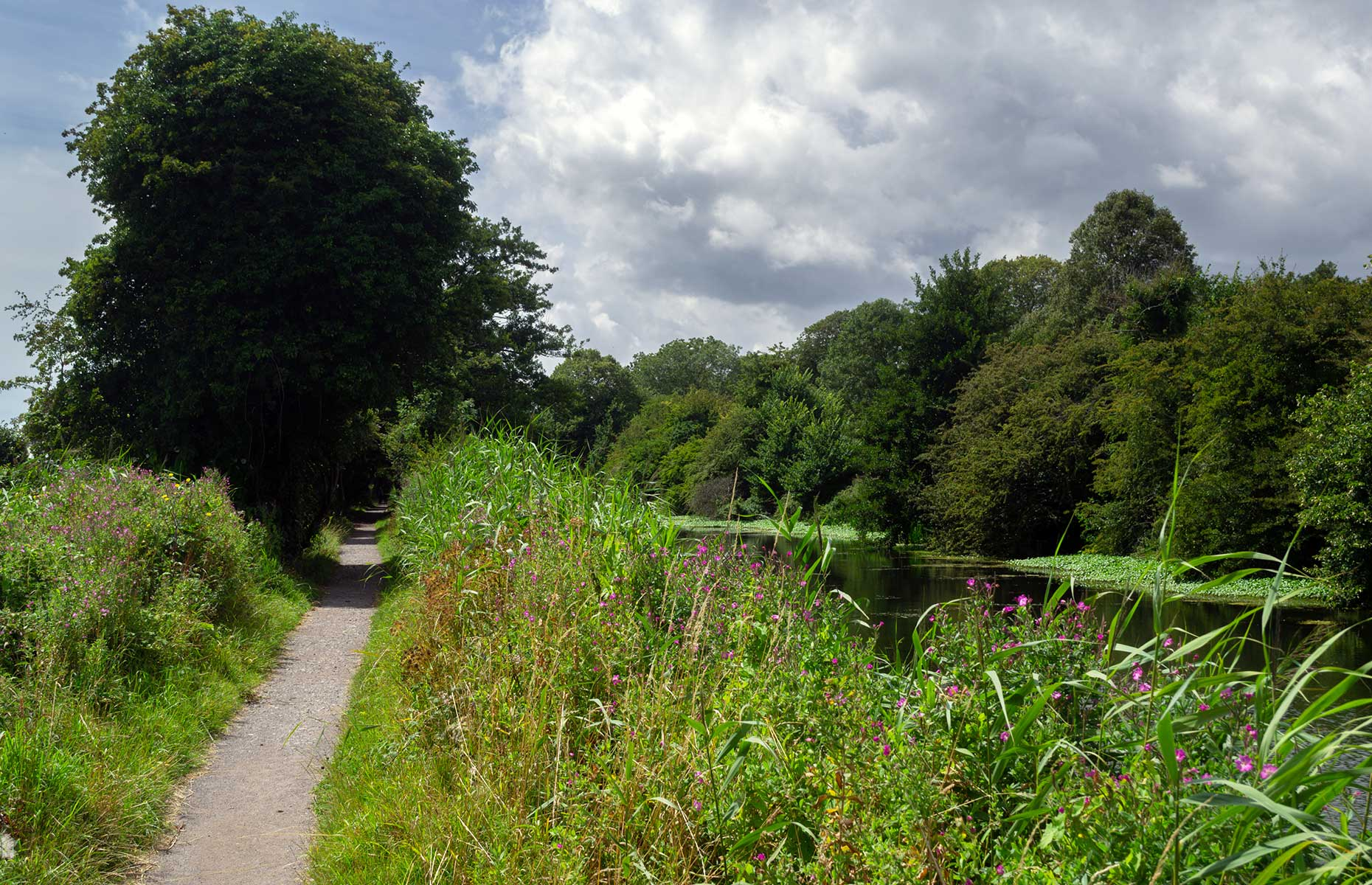 Royal Military Canal at Romney Marsh (Image: Veronique Stone/Shutterstock)