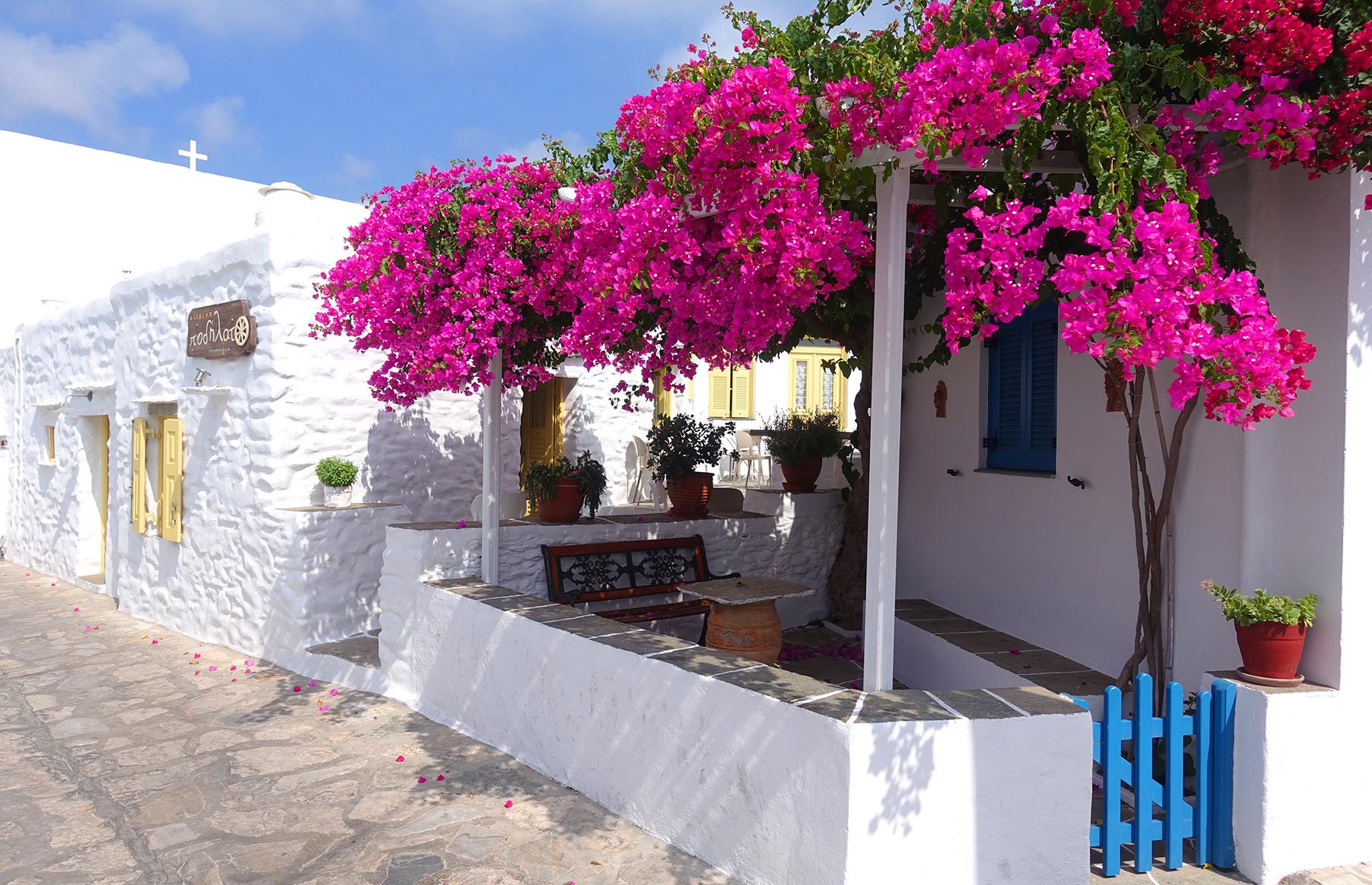 Artemonas village on Sifnos (Image: Aerial-motion/Shutterstock)