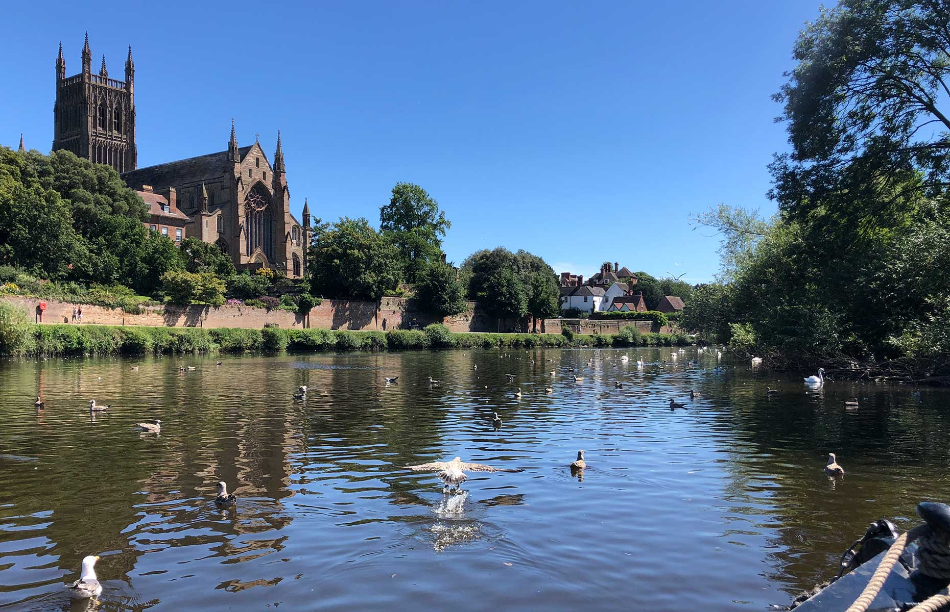 Worcester Cathedral viewed from the canal (Image: Courtesy of Jo Kesel)