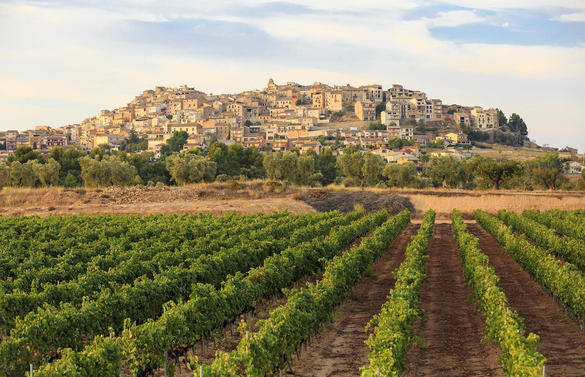Horta de Sant Joan in Catalonia, Spain (Image: David Ortega Baglietto/Shutterstock)