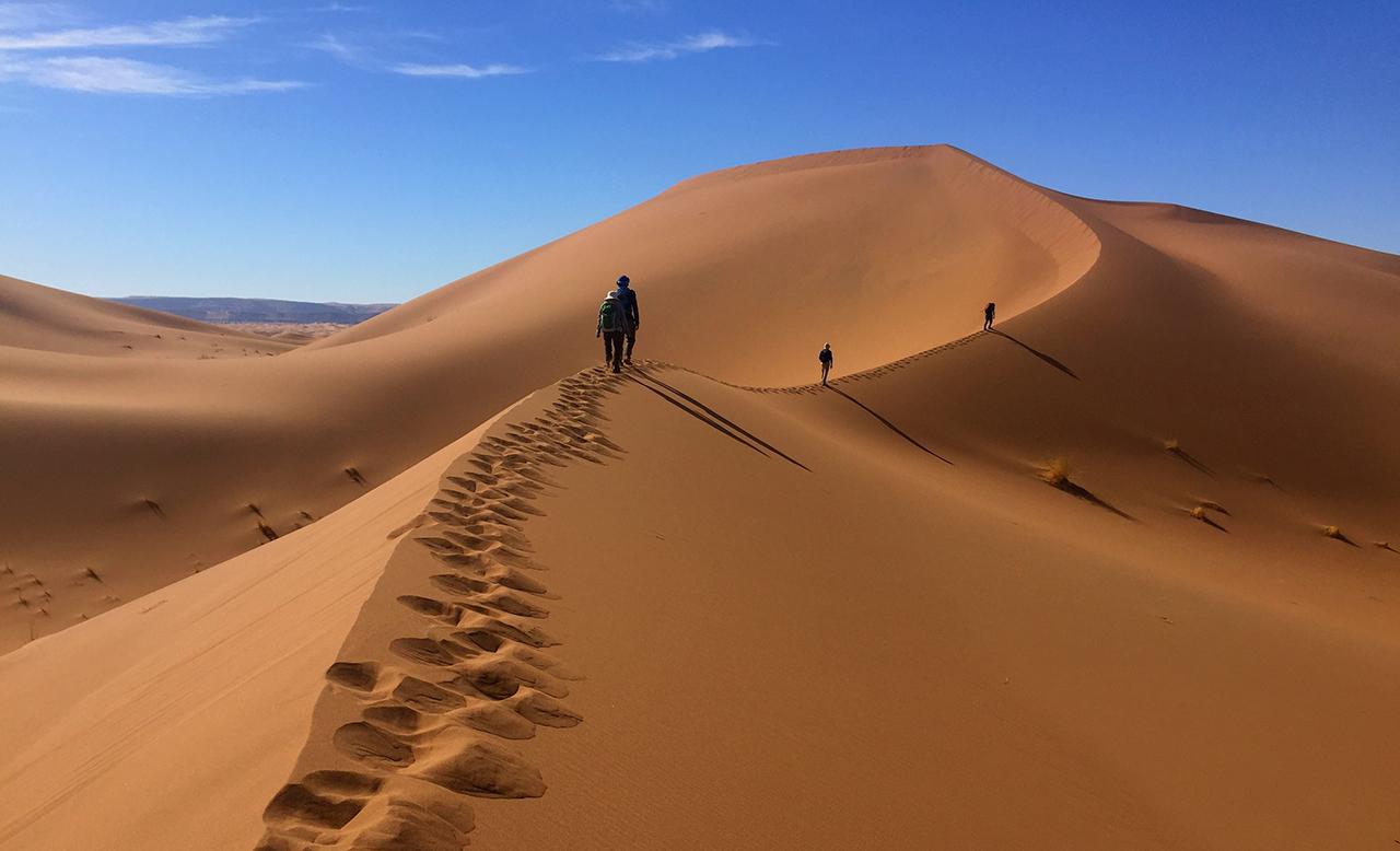 Sahara digital detox holiday
