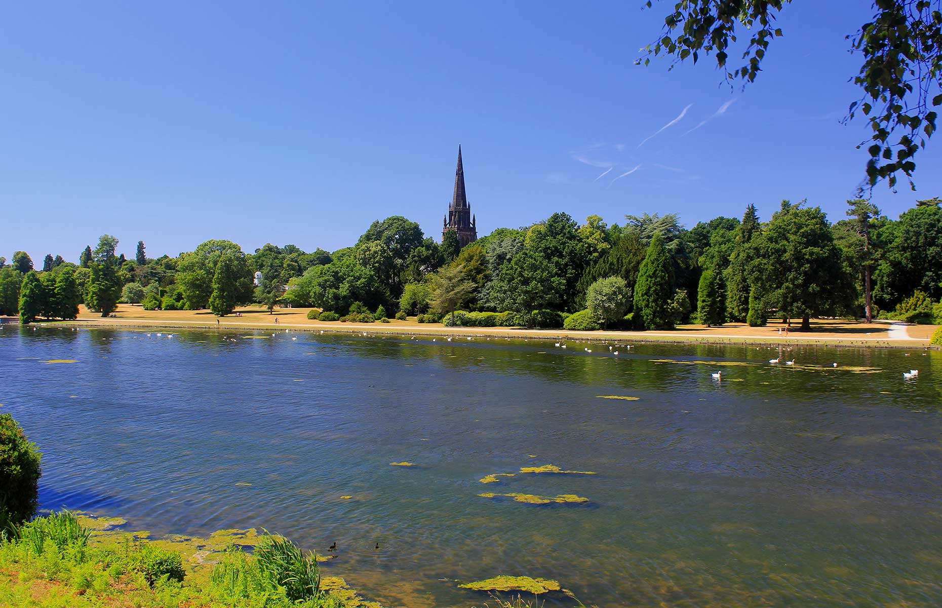 Clumber Park (Image: Kingswell Pix/Shutterstock)