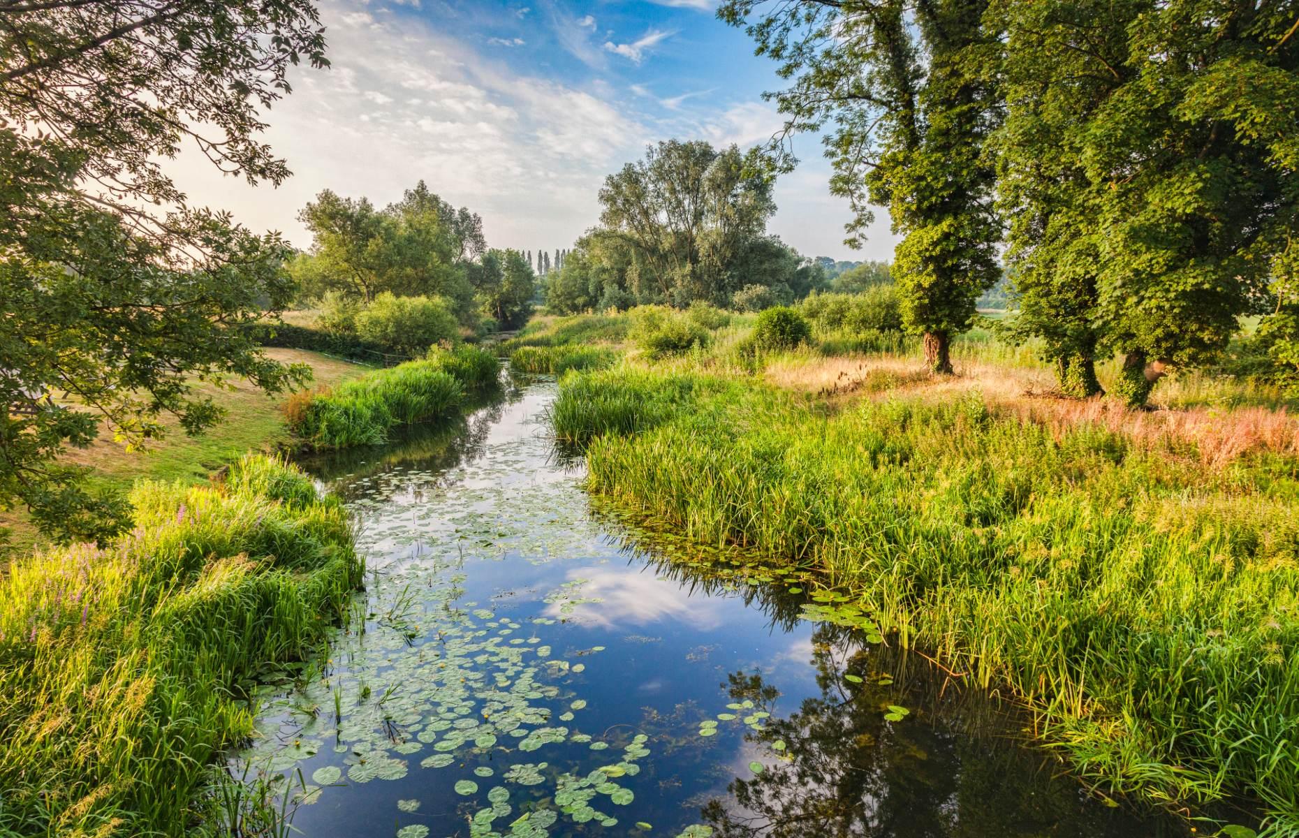 River Stour (Image: travellight/Shutterstock)