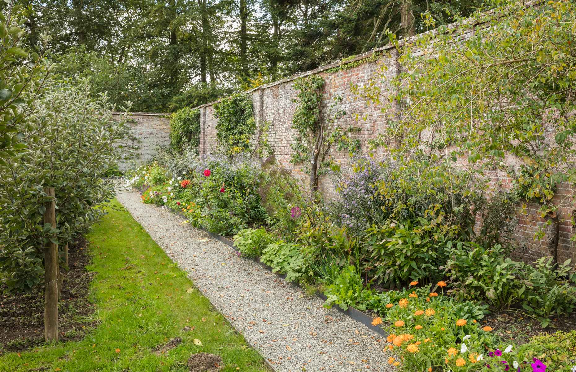 Walled garden in Wales