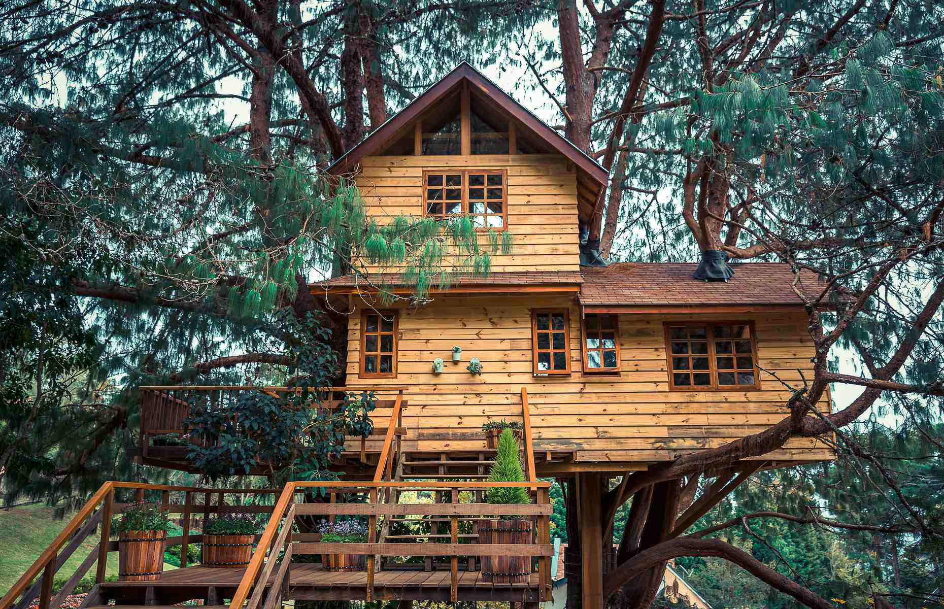 Quirky treehouse (image: Luciana Rinaldi/Shutterstock)