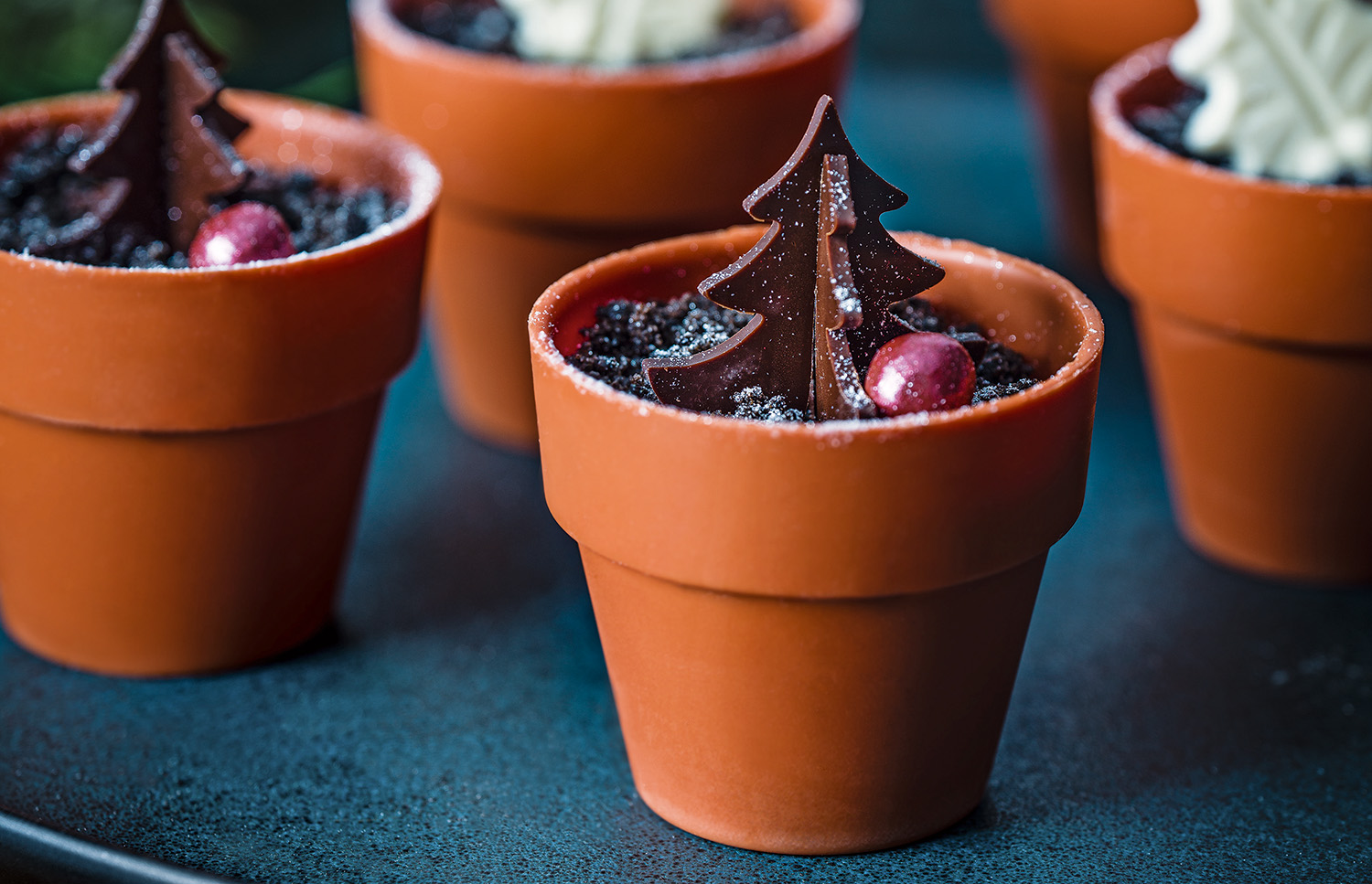 Tesco Finest Black Forest chocolate plant pots