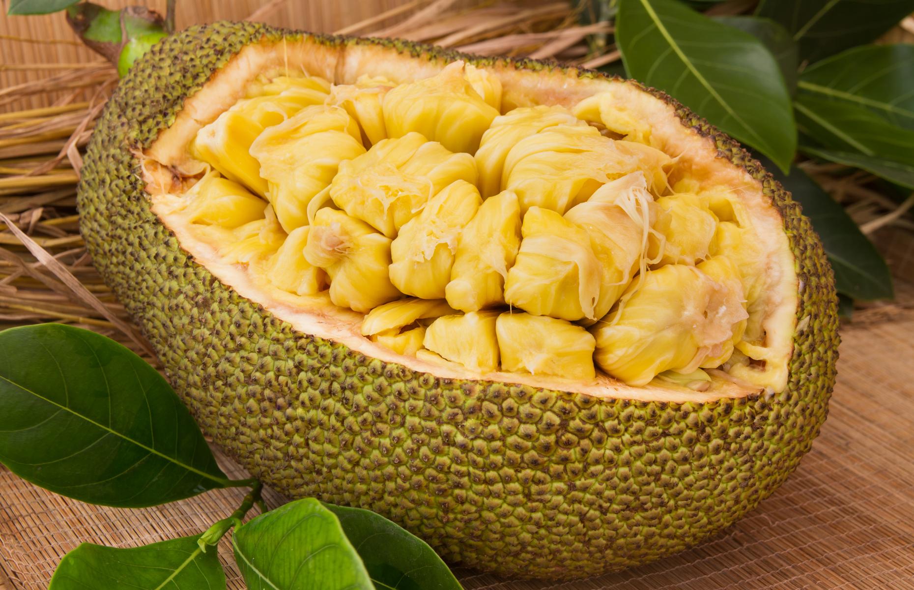 Jackfruit pods