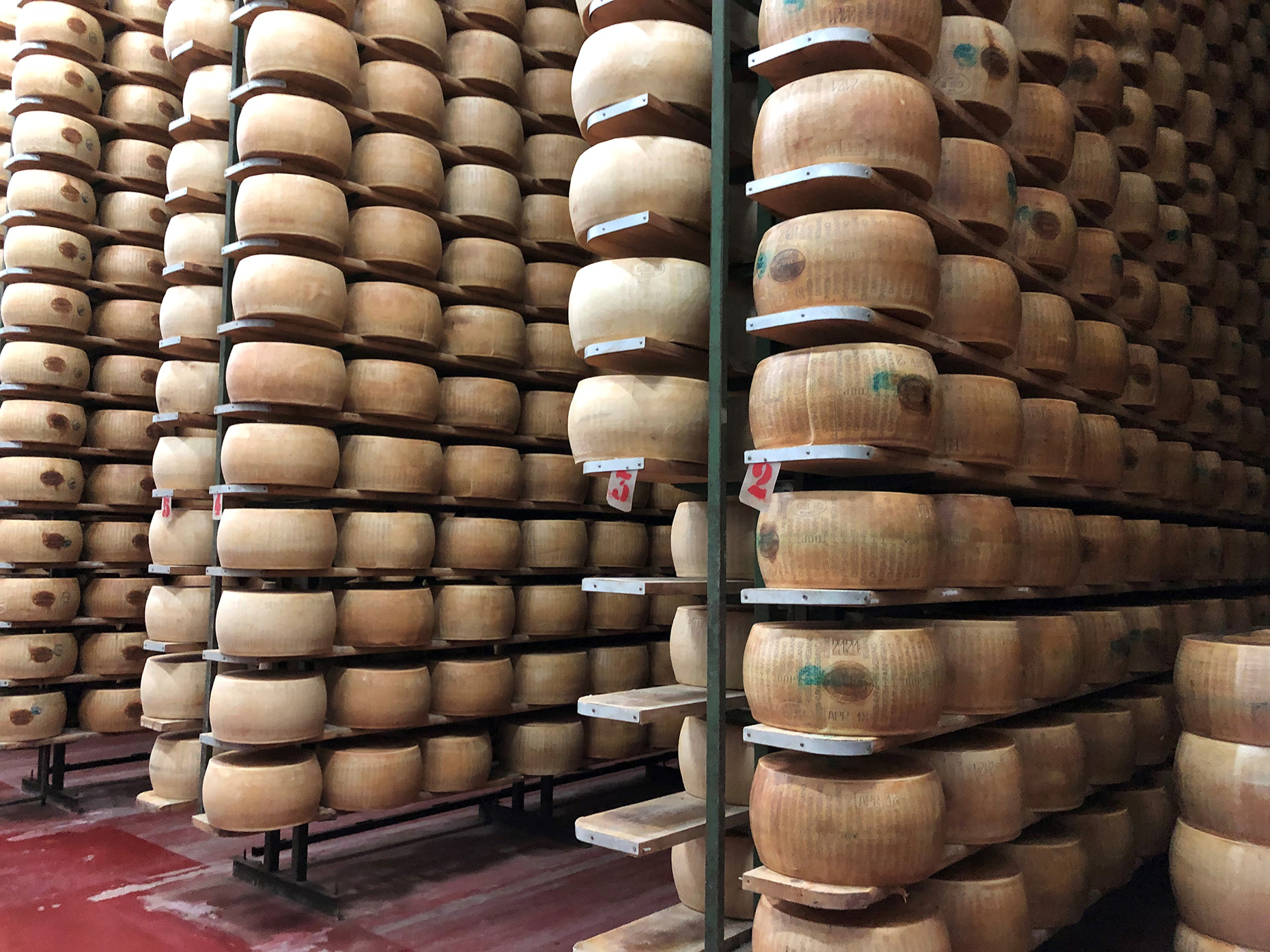 Parmesan in warehouse