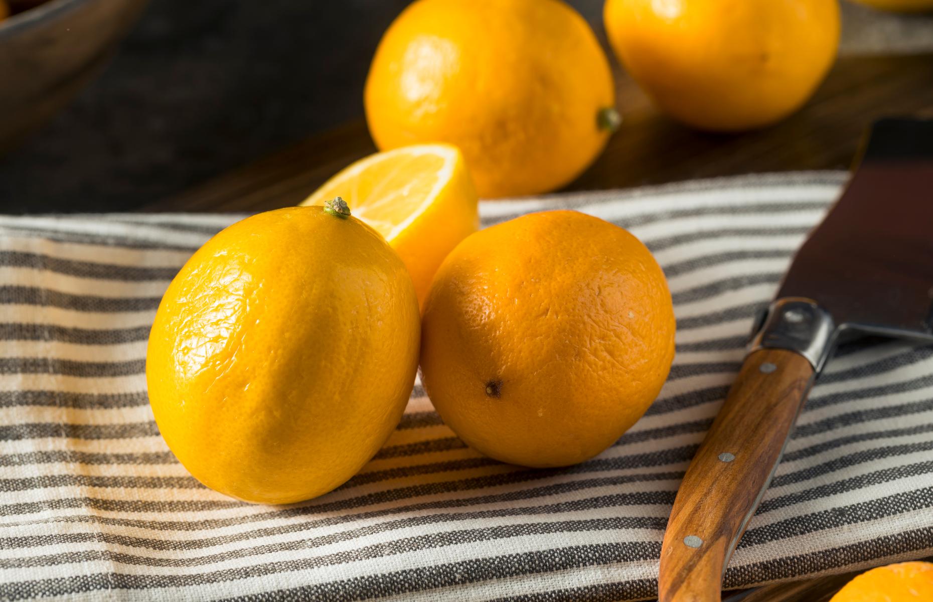 Meyer lemon (Image: Brent Hofacker/Shutterstock)