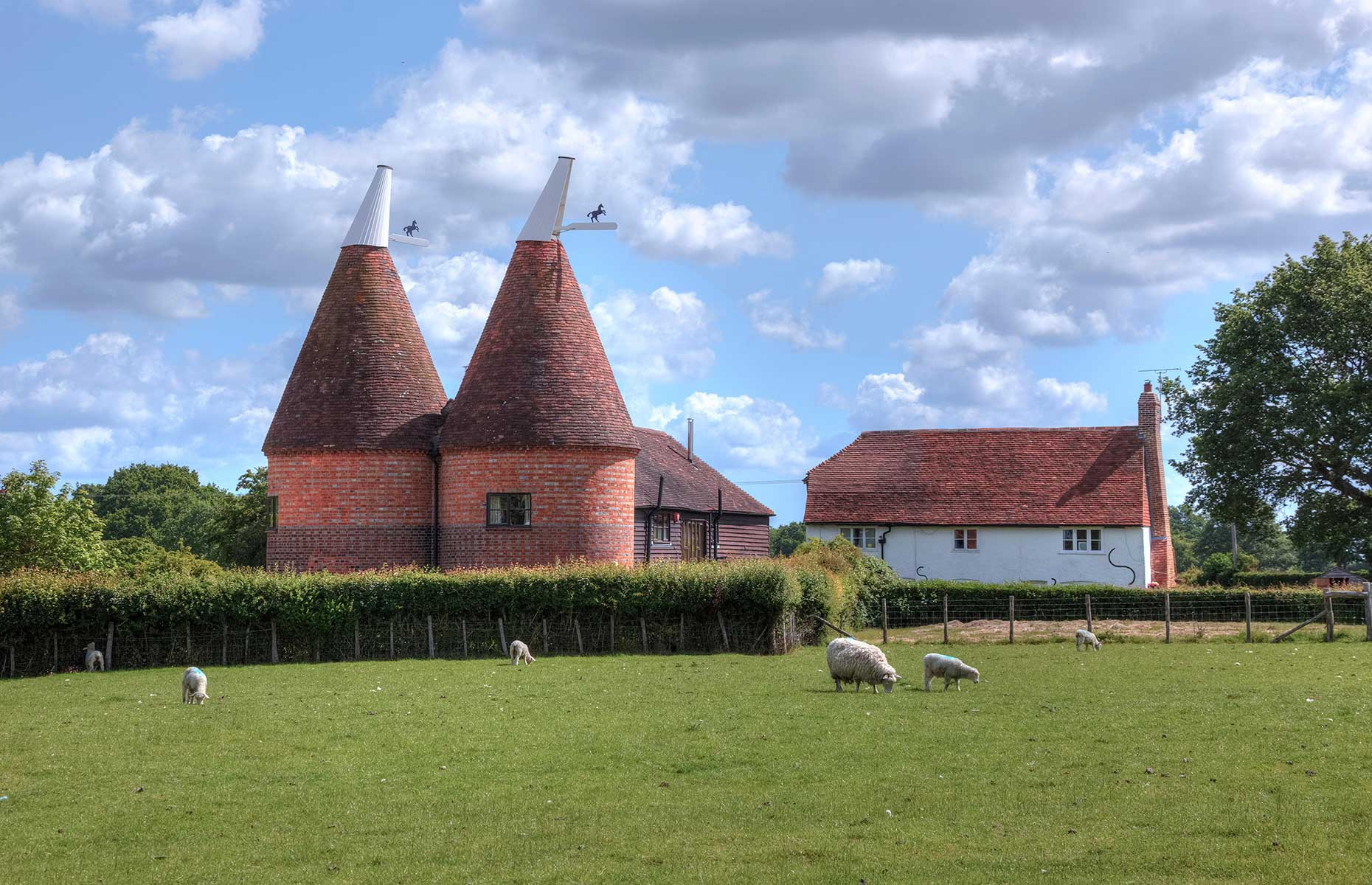 A typical oast house in Kent with sheep in the foreground (Image: Joana Kruse/Alamy Stock Photo)