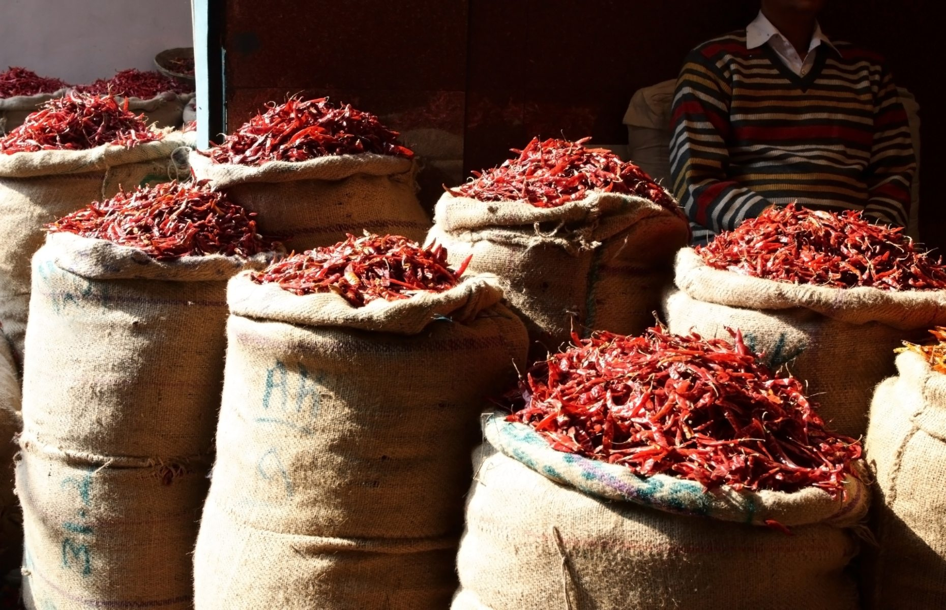 Dried chillies in sacks