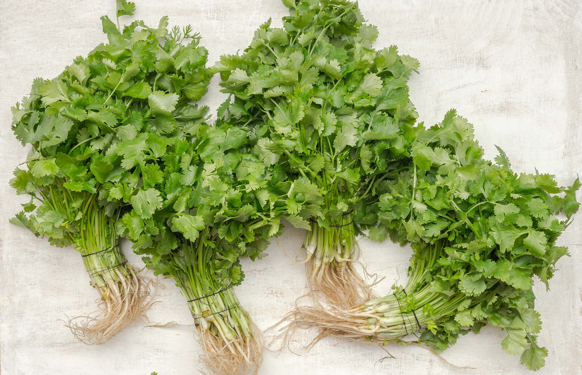 Bunches of fresh parsley (Image: Tomasz Olszewski/Unsplash)