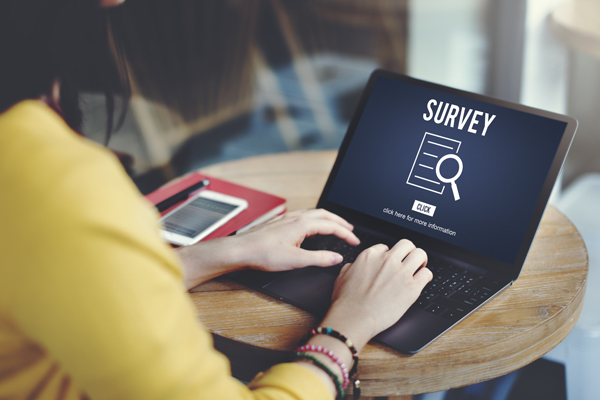 Easy ways to make money, including online surveys (Image: Shutterstock)