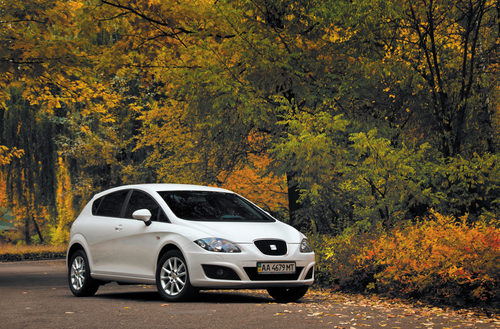 Seat Leon among the safest cars (Image: Shutterstock)