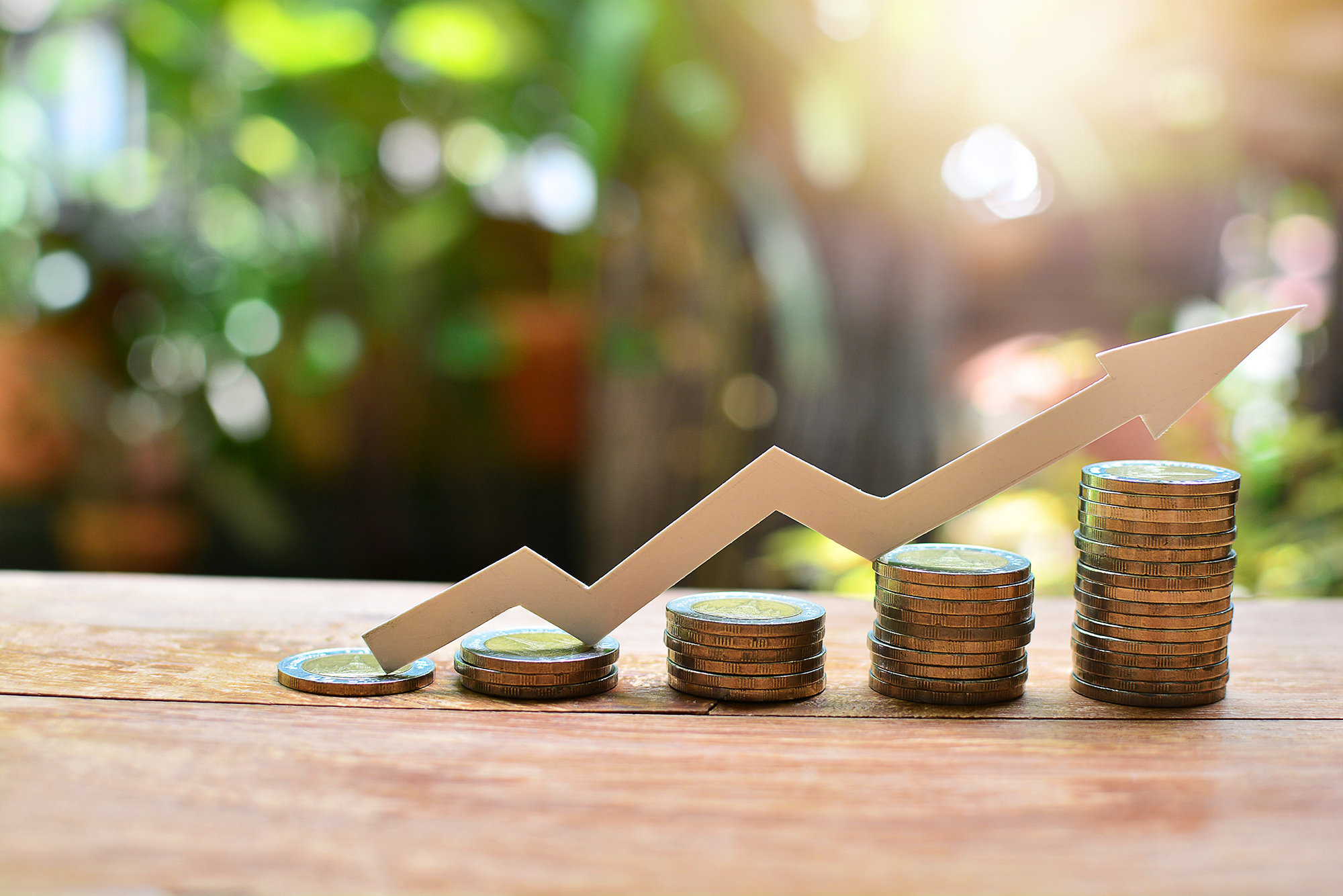 Investment growth concept. (Image: Shutterstock)