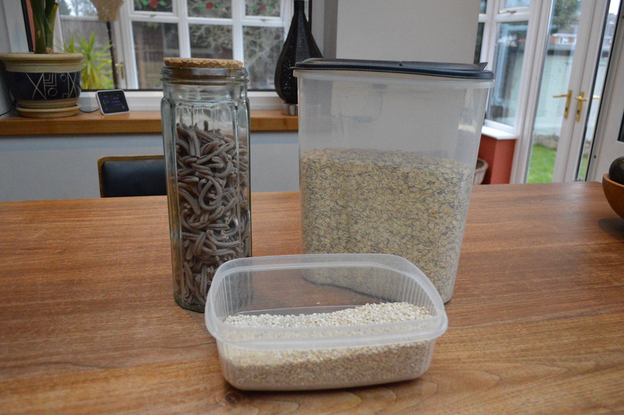 Pasta, oats and rice. (Image: Lily Canter)