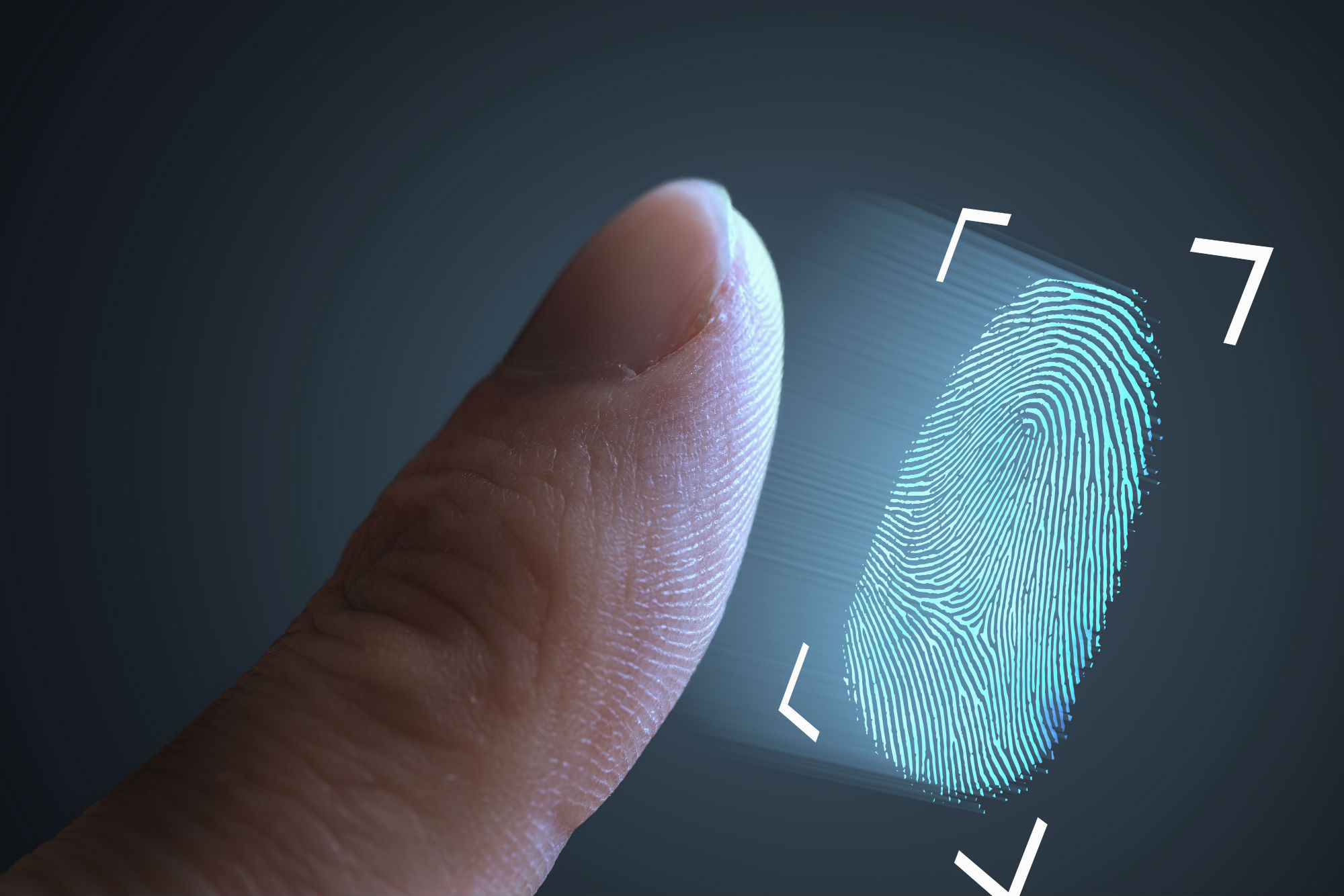Biometric indicators such as facial recognition and fingerprints are set to replace the password. Image: Shutterstock