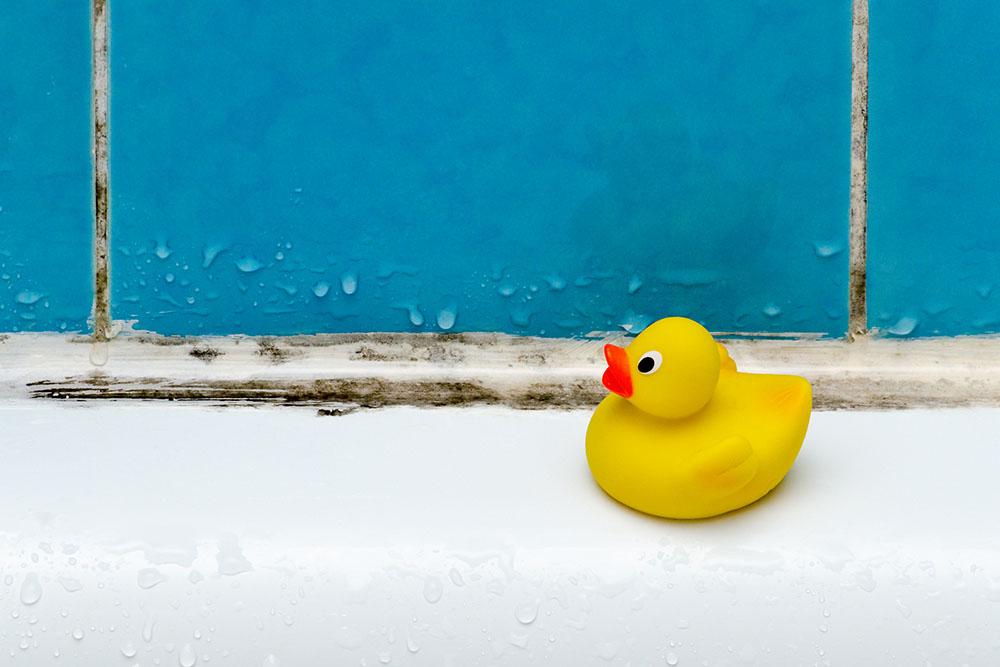 Image: nadisja/Shutterstock