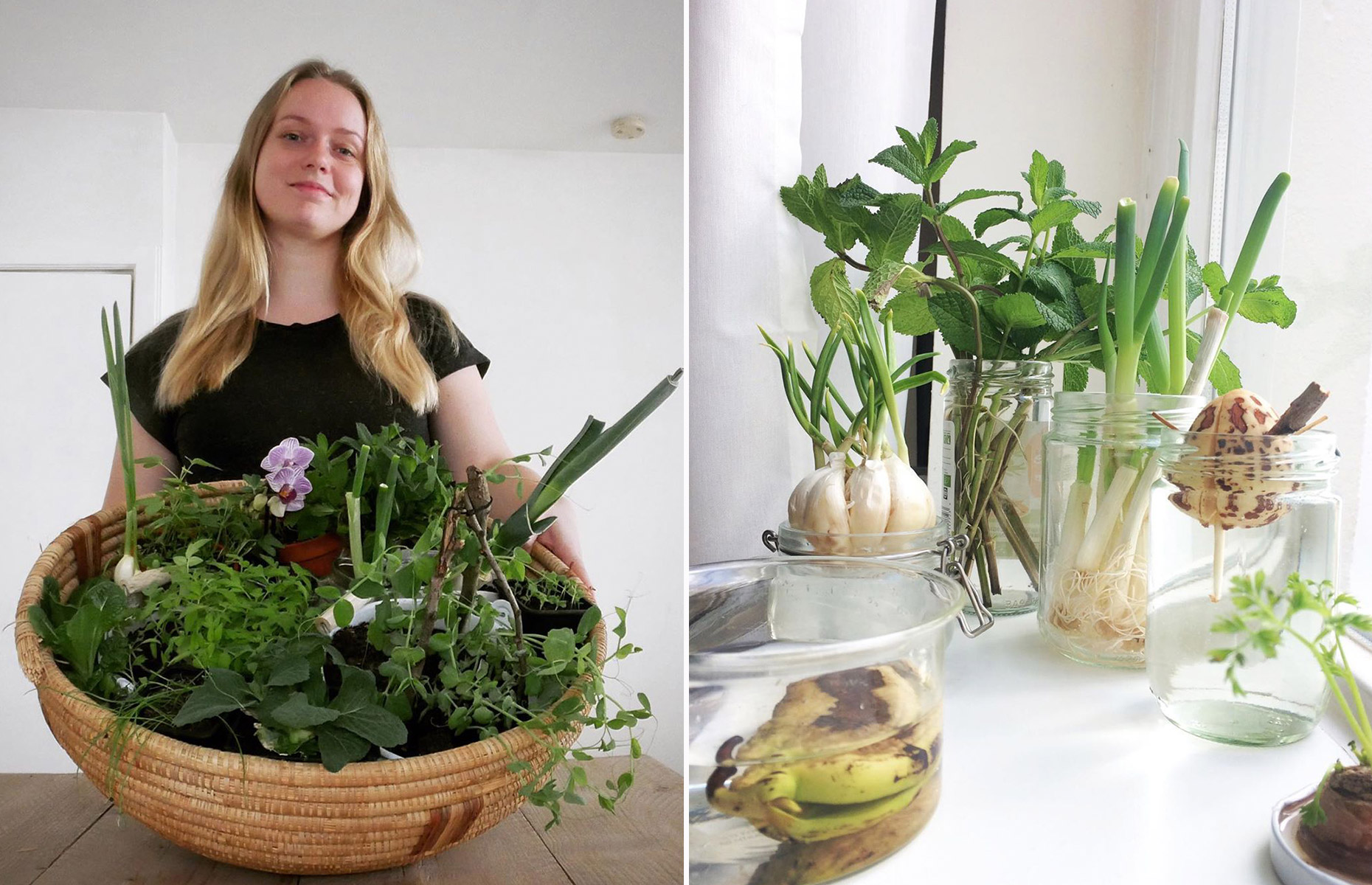 Joyce's projects prove that you don't need lots of space to grow your own food. Image: @the.farm.in.my.flat / Instagram