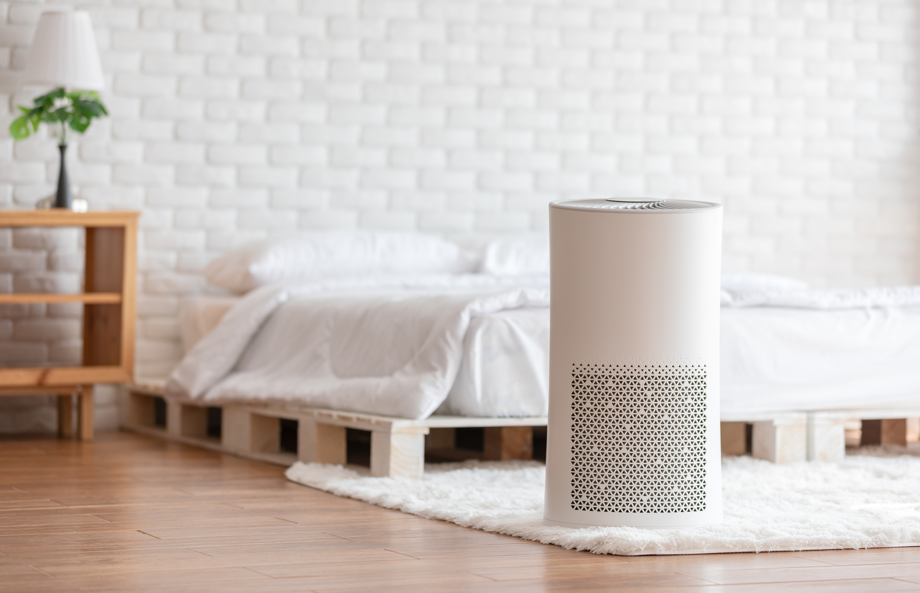 Air purifiers can increase household air quality and ease allergy symptoms. Image: Yuttana Jaowattana / Shutterstock