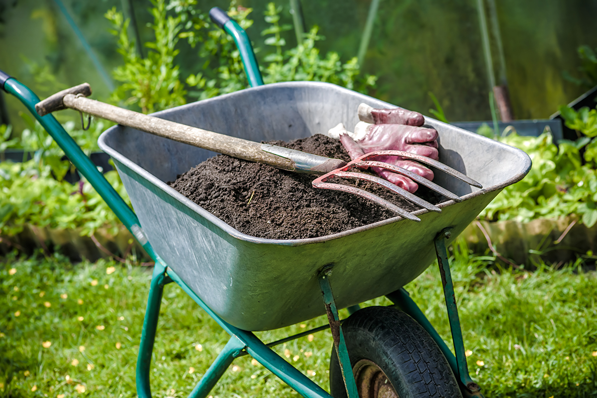Improve the soil when you start a garden. Image: Shutterstock