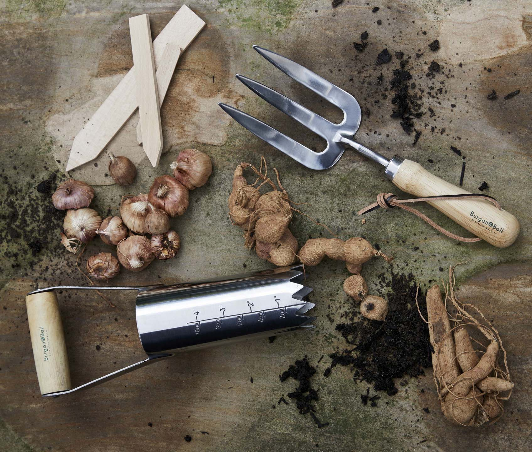 Now is the time to start planting fruits and vegetables. Image: Dobbies