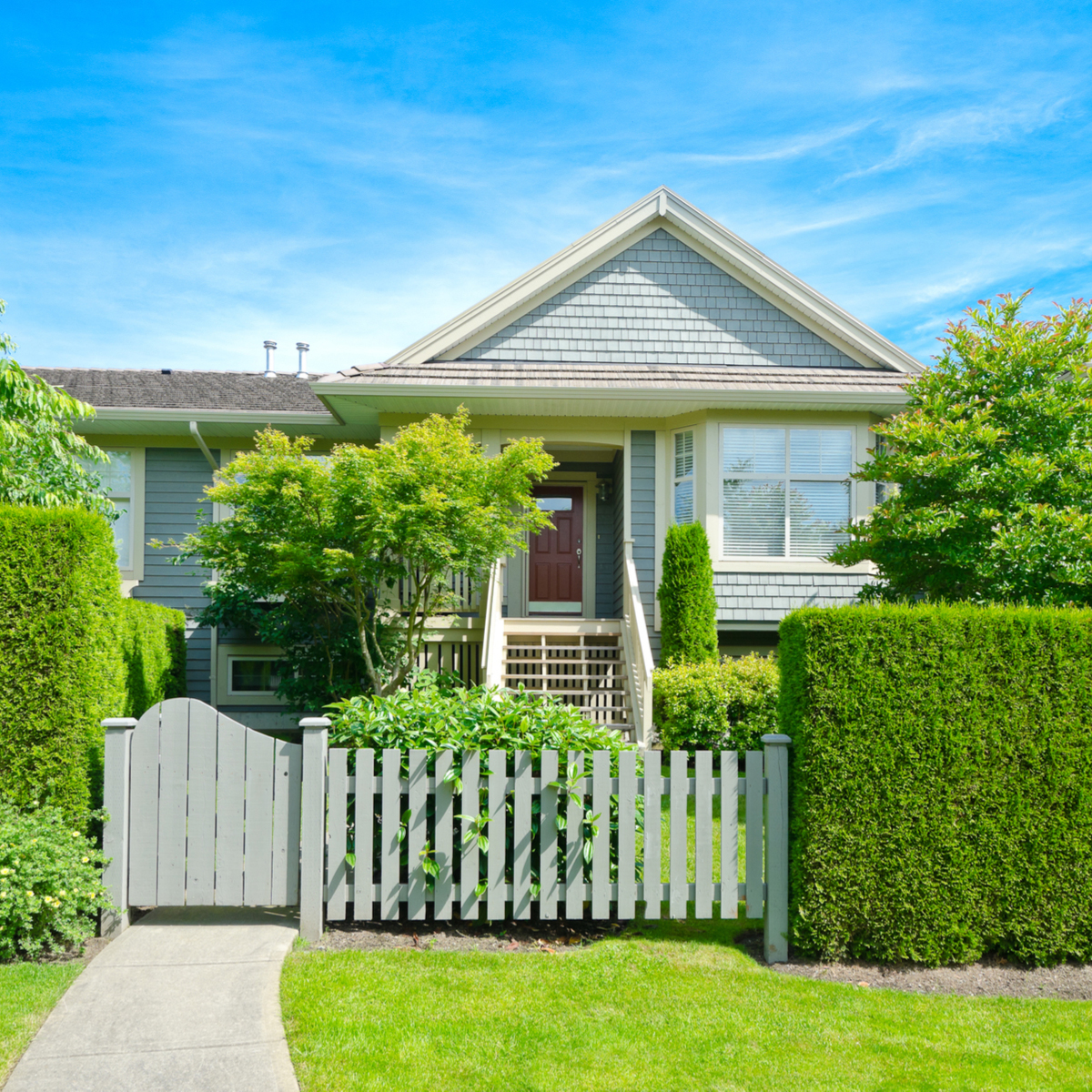 Slow growing hedges are very desirable in a property. Image: romakoma / Shutterstock