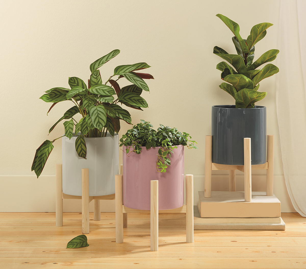 Melinara plant pots from Lidl