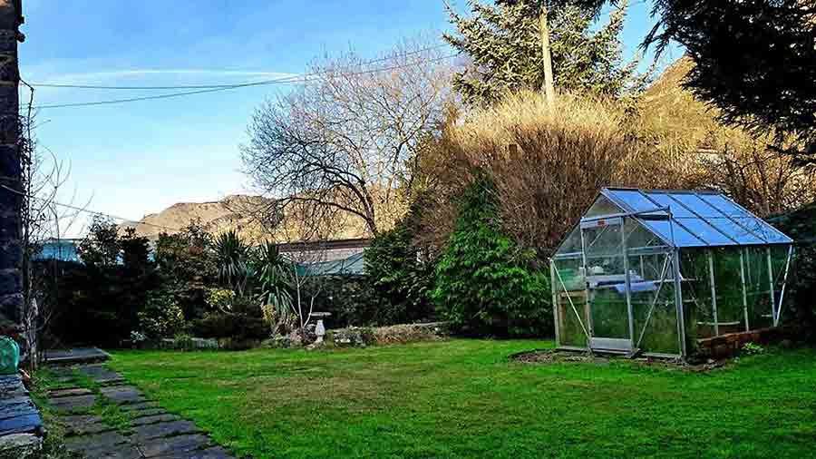 The garden offers ample space for a green-fingered buyer to take in hand. Image: Pattinson