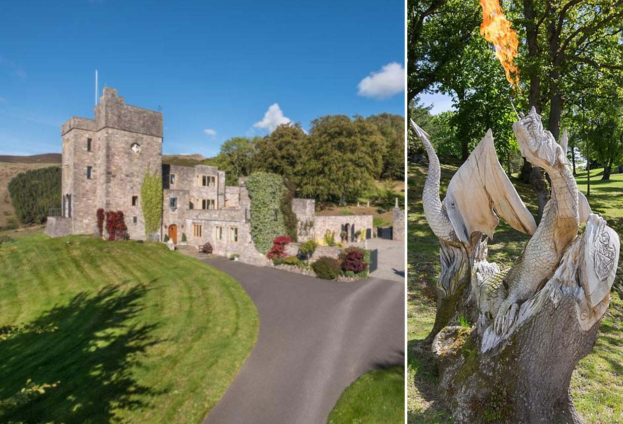 Castle with dragon for sale