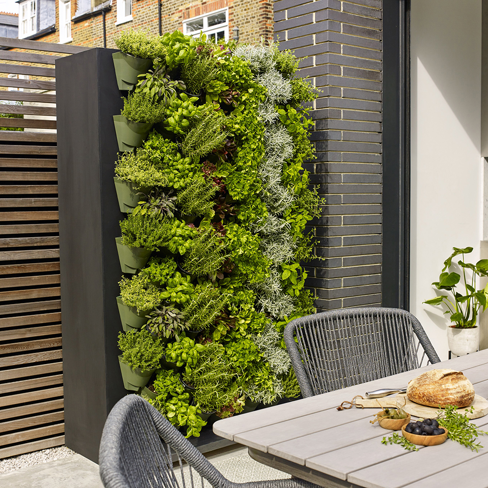 Living wall in vertical containers. Image: Dobbies